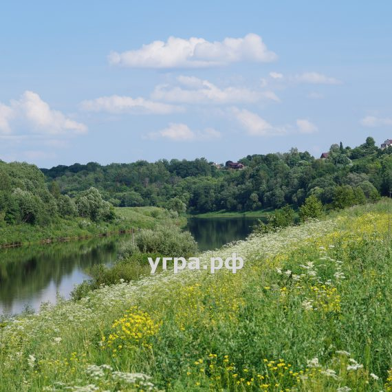 деревня Матово летние фото река Угра