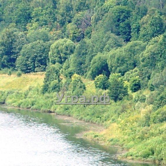 Фото галерея реки Угра официальный сайт.