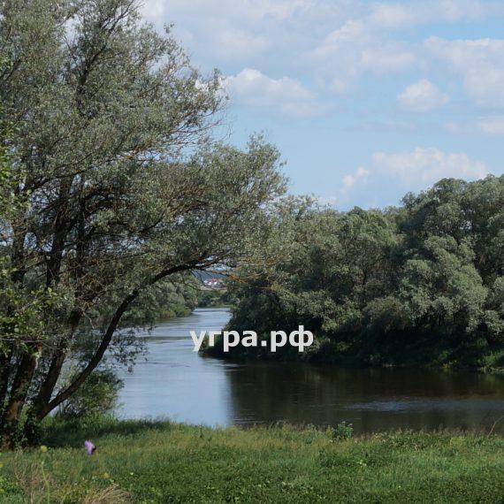 деревня Свинухово фото