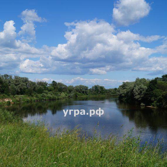 Деревня Новоскаковское река Угра летние фото