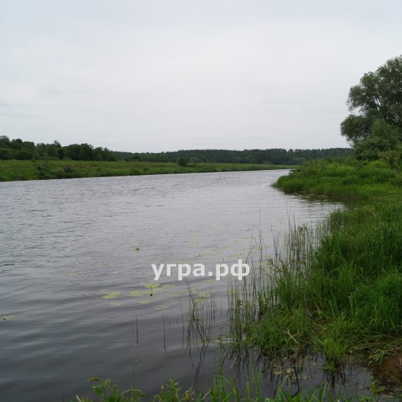 Деревня Корокино летние фото