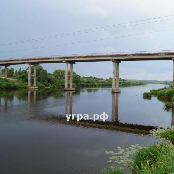 Мост деревня Сени фото